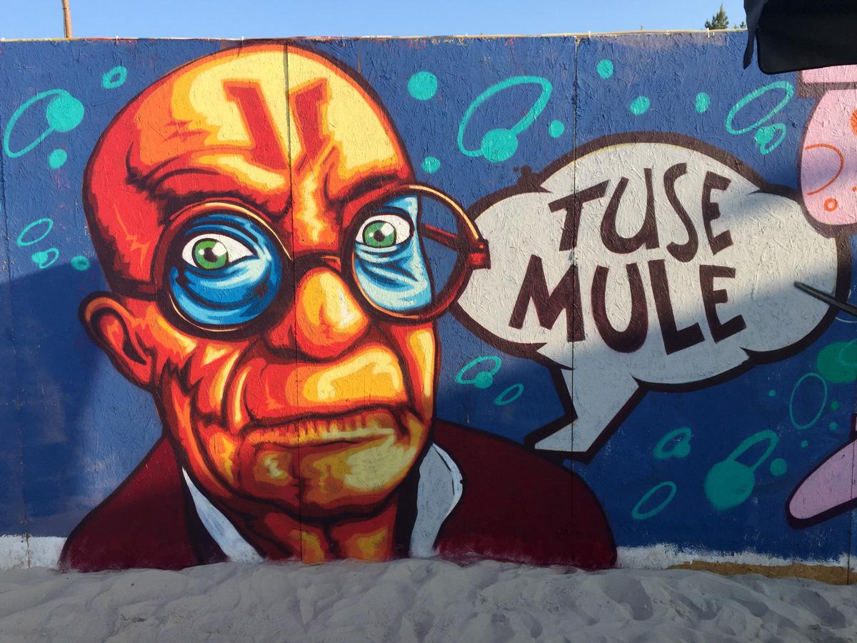 tuse_mule_net